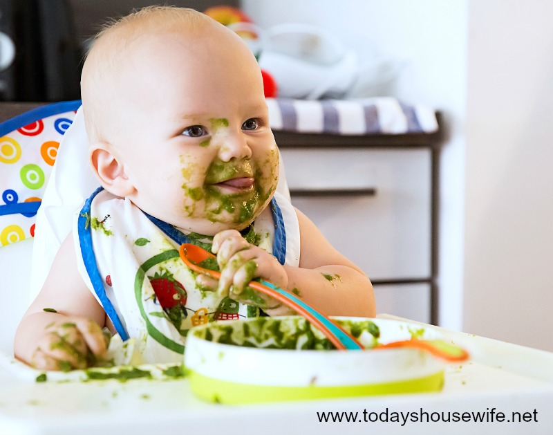 feeding the toddler with veggies